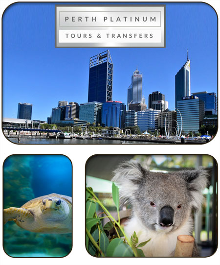 Perth Platinum Tours Fremantle Accommodation