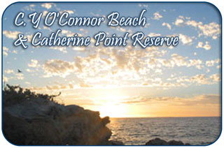 CY O'Connor Beach & Catherine Point Reserve, Fremantle