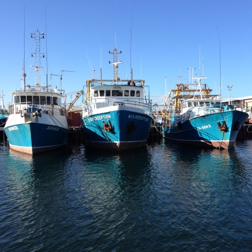 Fishing Boat Harbour, Fremantle, WA