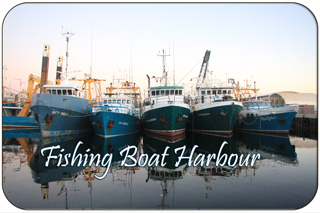 Fremantle Fishing Boat Harbour - Boats